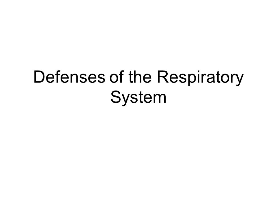 Defenses of the Respiratory System