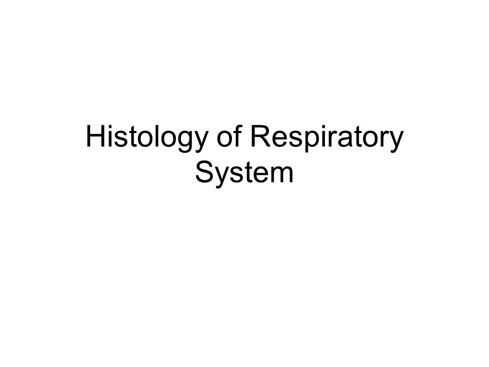 Respiratory System Conducting Part-responsible for passage of air and conditioning of the inspired air.