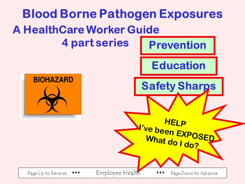 Page Up to Reverse  Employee Health  Page Down to Advance Blood Borne Pathogen Exposures A HealthCare Worker Guide 4 part series Prevention Education Safety Sharps HELP I've been EXPOSED What do I do