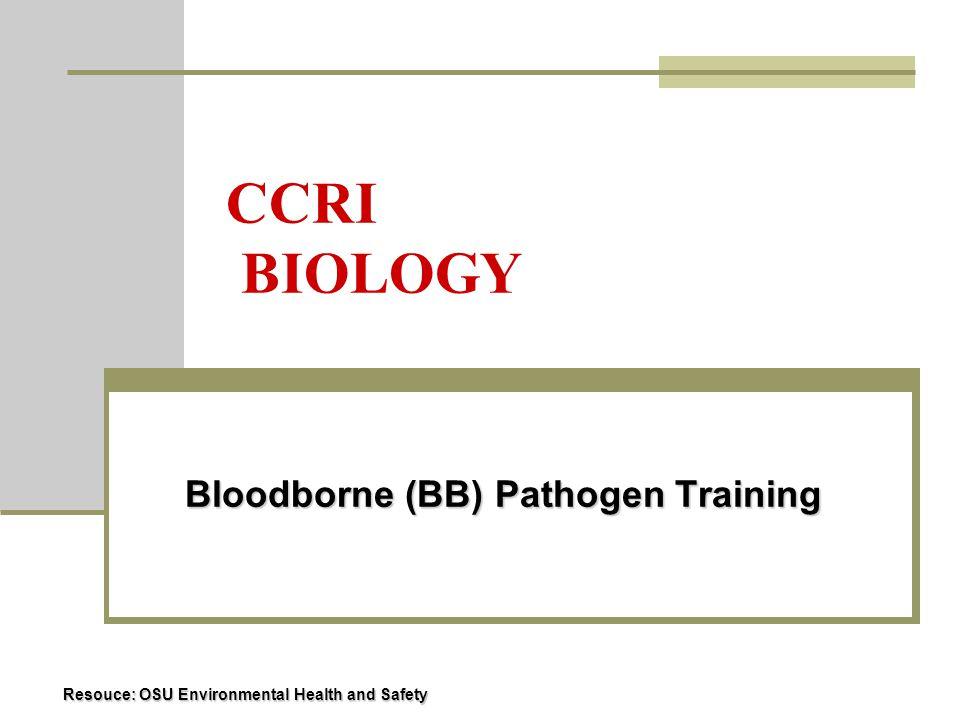 What is a BB Pathogen.