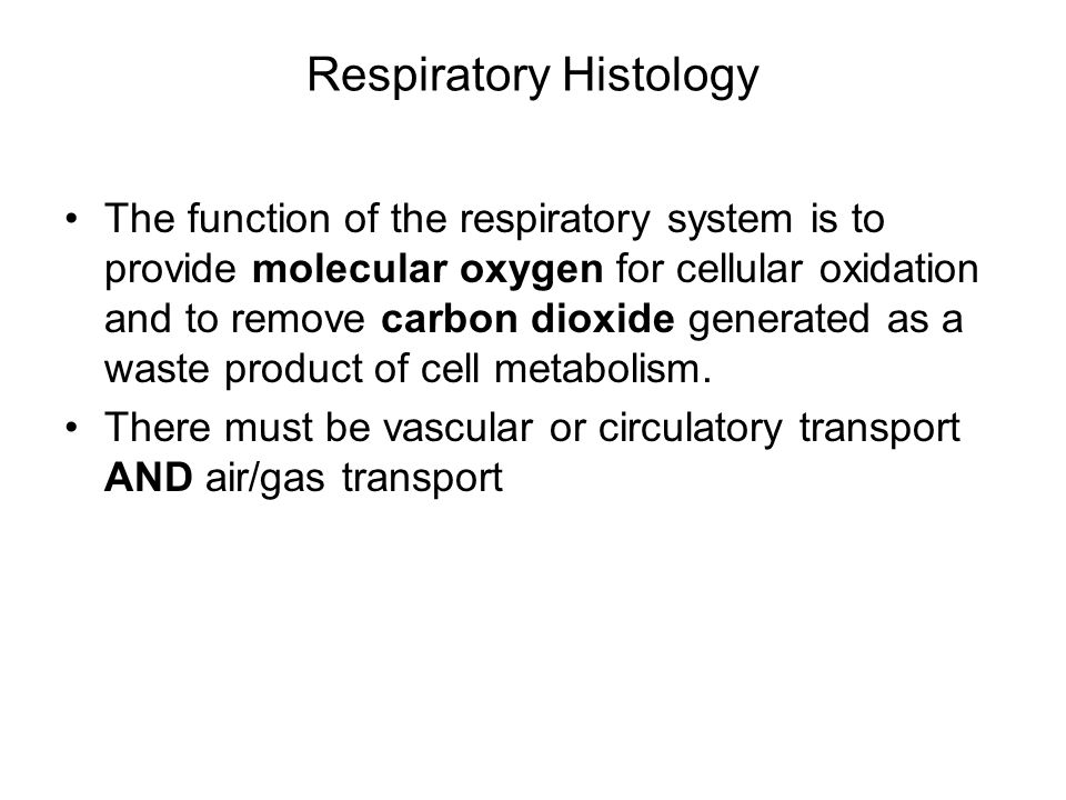 Respiratory Histology The function of the respiratory system is to provide molecular oxygen for cellular oxidation and to remove carbon dioxide genera