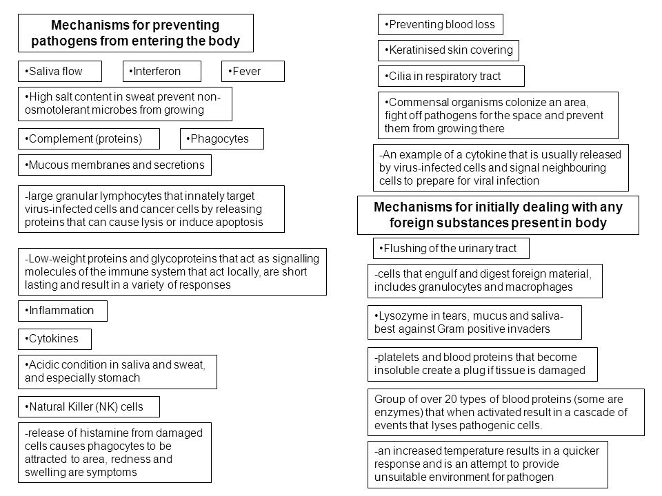 Mechanisms for preventing pathogens from entering the body Mechanisms for initially dealing with any foreign substances present in body Mucous membran