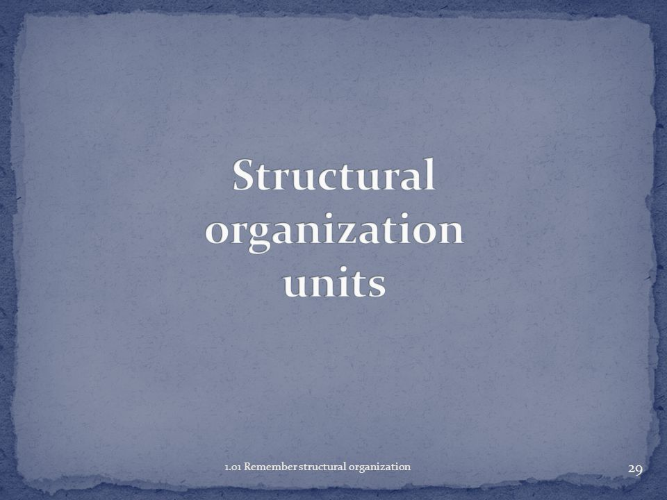 29 1.01 Remember structural organization