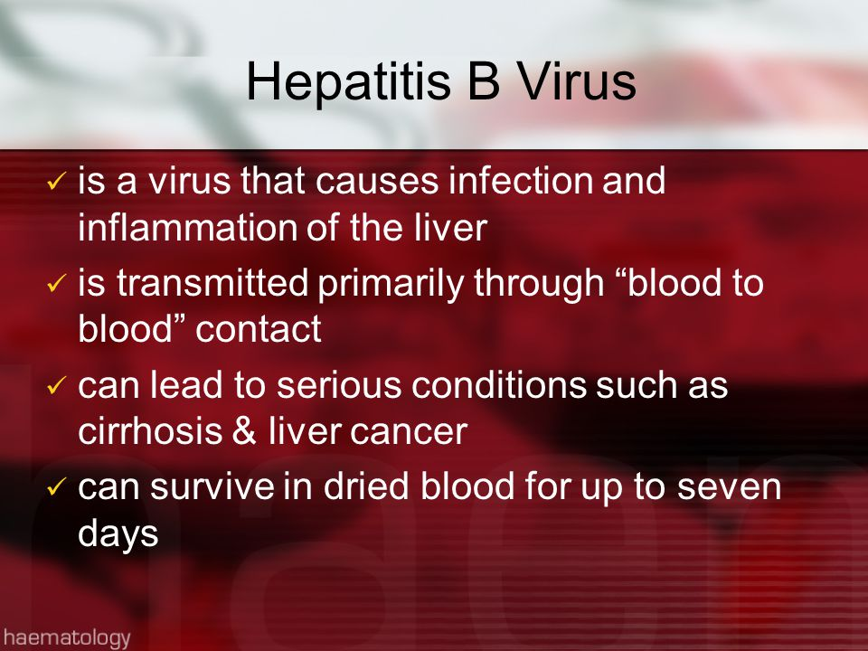 HBV Transmission Infected blood and body fluids In infected persons, HBV can be found in: Blood Body tissue Saliva Semen Vaginal secretions Urine Breast milk