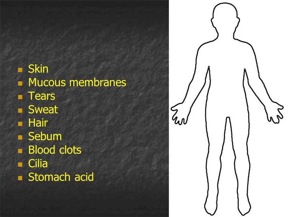 Skin Mucous membranes Tears Sweat Hair Sebum Blood clots Cilia Stomach acid