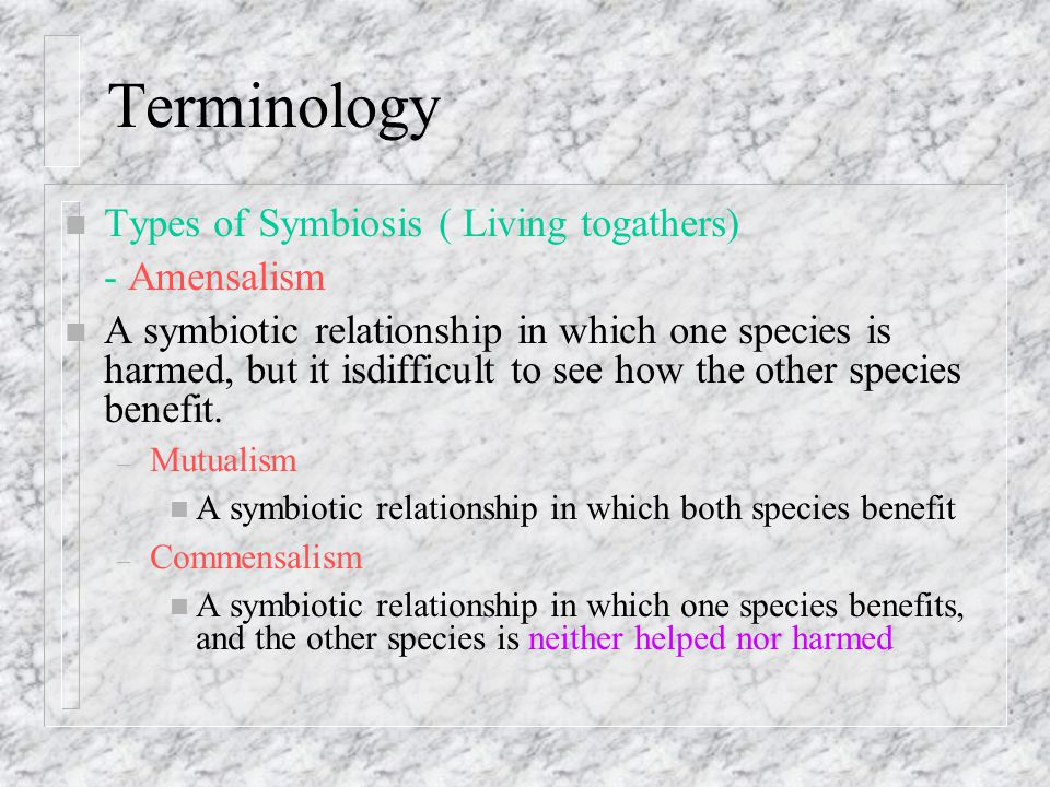 n Types of Symbiosis (cont.) – Parasitism A symbiotic relationship in which one species benefits, and the other species is harmed Generally, the species that benefits (the parasite) is much smaller than the species that is harmed (the host)
