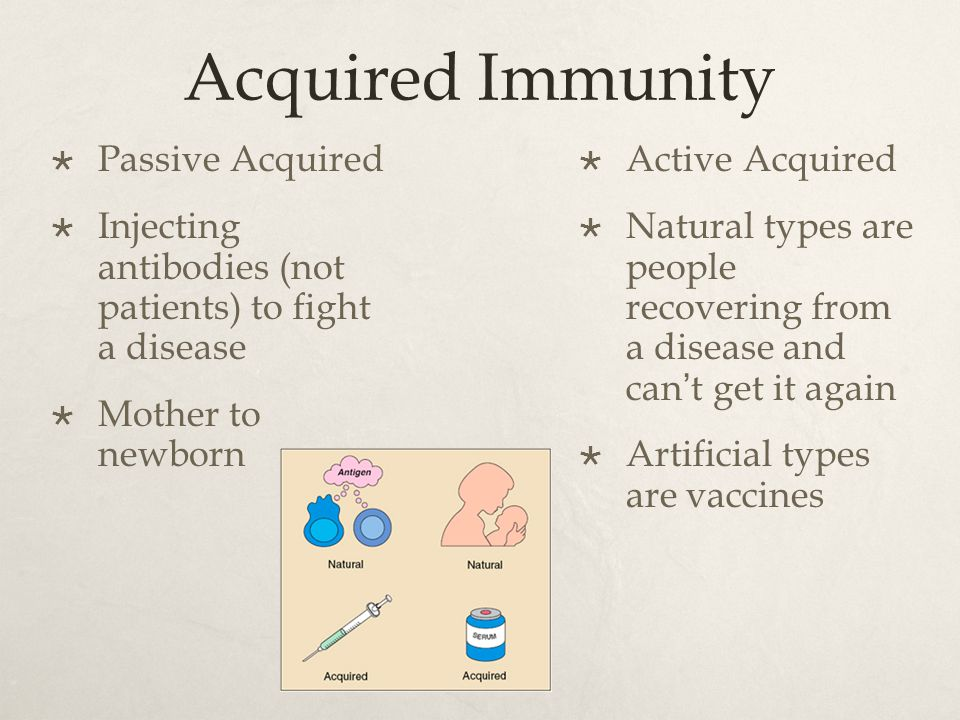 Acquired Immunity  Passive Acquired  Injecting antibodies (not patients) to fight a disease  Mother to newborn  Active Acquired  Natural types are people recovering from a disease and can't get it again  Artificial types are vaccines