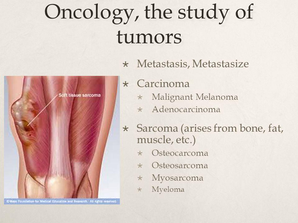 Oncology, the study of tumors  Metastasis, Metastasize  Carcinoma  Malignant Melanoma  Adenocarcinoma  Sarcoma (arises from bone, fat, muscle, etc.)  Osteocarcoma  Osteosarcoma  Myosarcoma  Myeloma