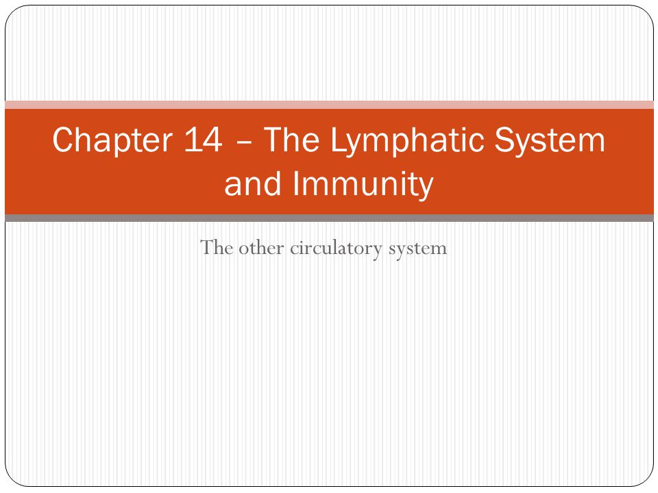 Immune System Specific immunity Includes protective mechanisms that confer very specific protection against certain types of invading materials.