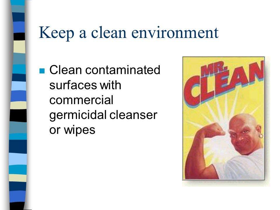 Keep a clean environment n Clean contaminated surfaces with commercial germicidal cleanser or wipes