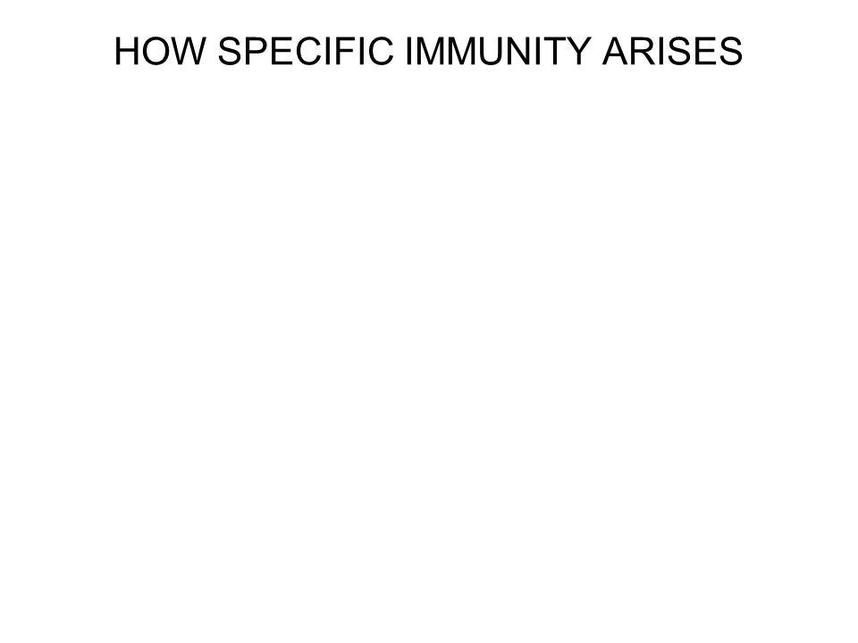 Immunity can be achieved naturally or artificially Active immunity occurs when the immune system responds to a foreign antigen acquired either by natural infection or artificially, as by immunization.