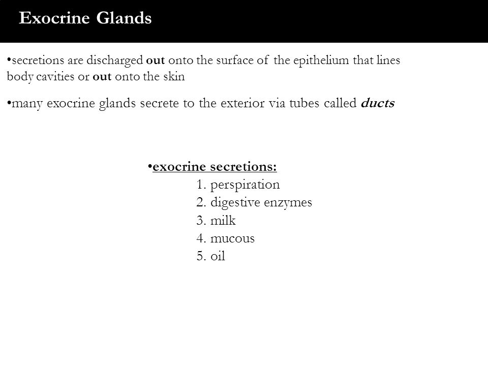 Exocrine Glands secretions are discharged out onto the surface of the epithelium that lines body cavities or out onto the skin many exocrine glands se