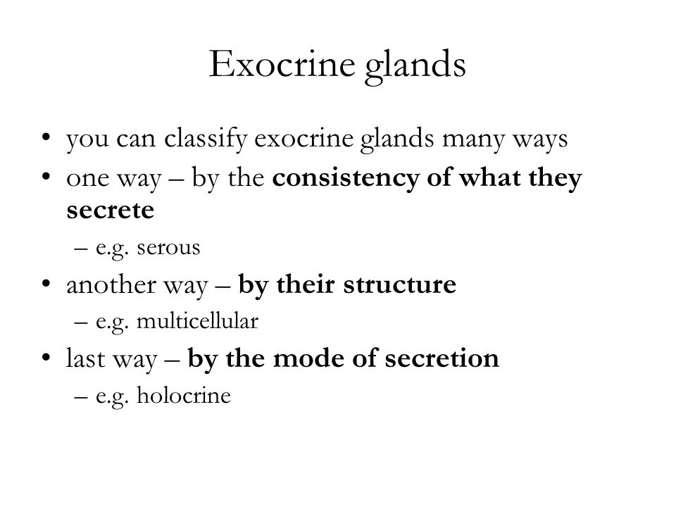 Exocrine glands you can classify exocrine glands many ways one way – by the consistency of what they secrete –e.g. serous another way – by their struc