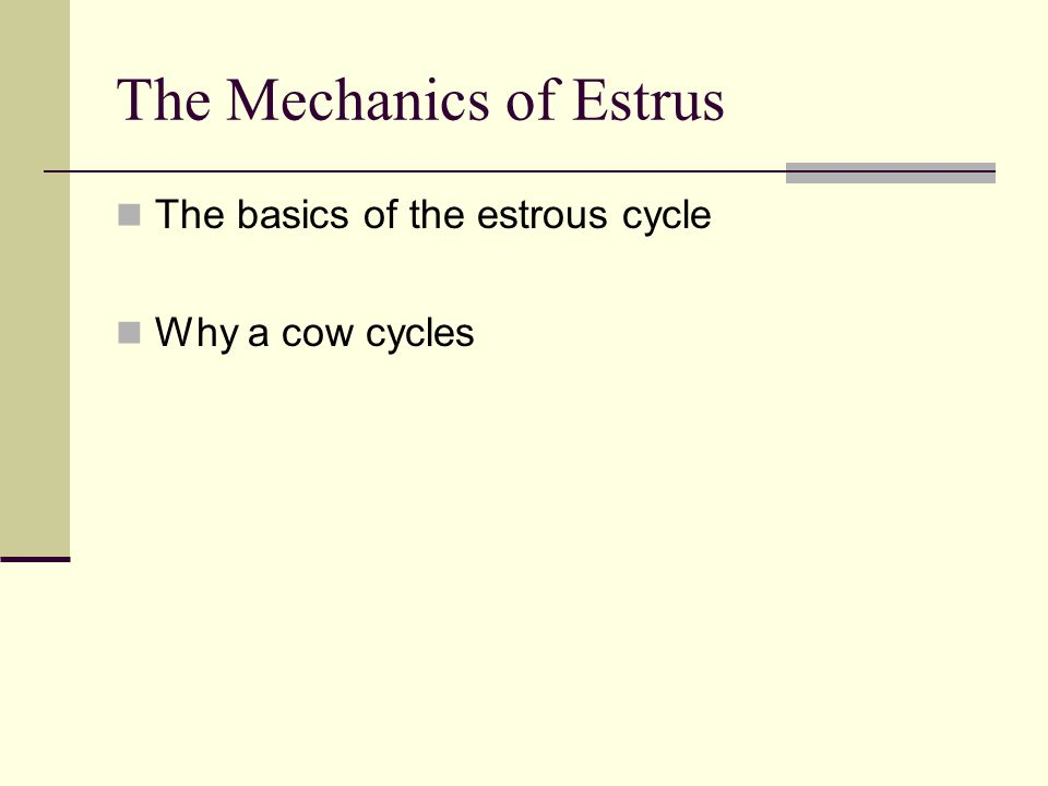 The Mechanics of Estrus The basics of the estrous cycle Why a cow cycles
