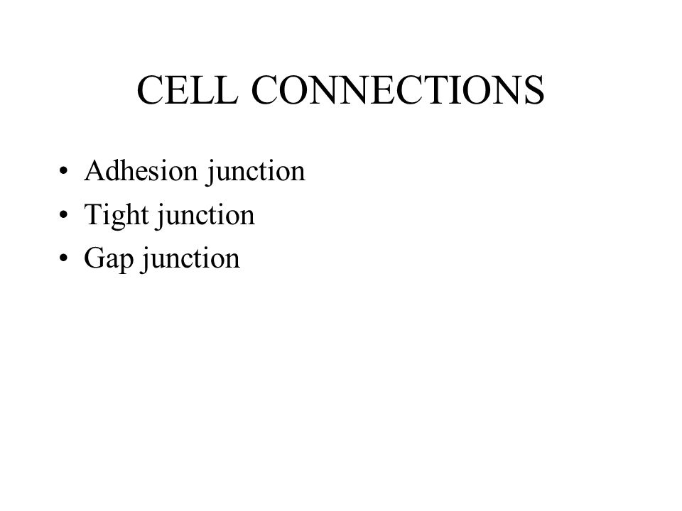 CELL CONNECTIONS Adhesion junction Tight junction Gap junction