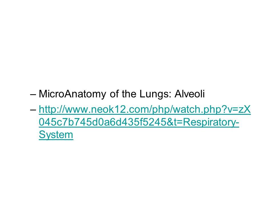 –MicroAnatomy of the Lungs: Alveoli –http://www.neok12.com/php/watch.php?v=zX 045c7b745d0a6d435f5245&t=Respiratory- Systemhttp://www.neok12.com/php/watch.php?v=zX 045c7b745d0a6d435f5245&t=Respiratory- System