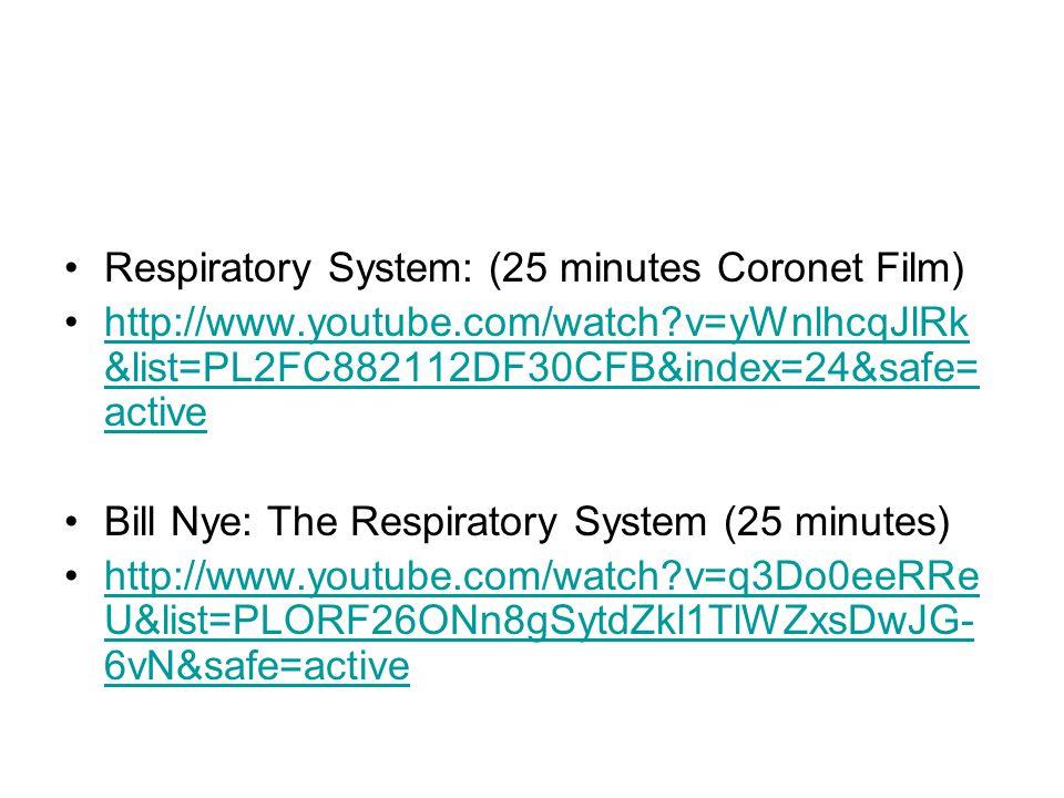 Respiratory System: (25 minutes Coronet Film) http://www.youtube.com/watch?v=yWnlhcqJlRk &list=PL2FC882112DF30CFB&index=24&safe= activehttp://www.youtube.com/watch?v=yWnlhcqJlRk &list=PL2FC882112DF30CFB&index=24&safe= active Bill Nye: The Respiratory System (25 minutes) http://www.youtube.com/watch?v=q3Do0eeRRe U&list=PLORF26ONn8gSytdZkl1TlWZxsDwJG- 6vN&safe=activehttp://www.youtube.com/watch?v=q3Do0eeRRe U&list=PLORF26ONn8gSytdZkl1TlWZxsDwJG- 6vN&safe=active