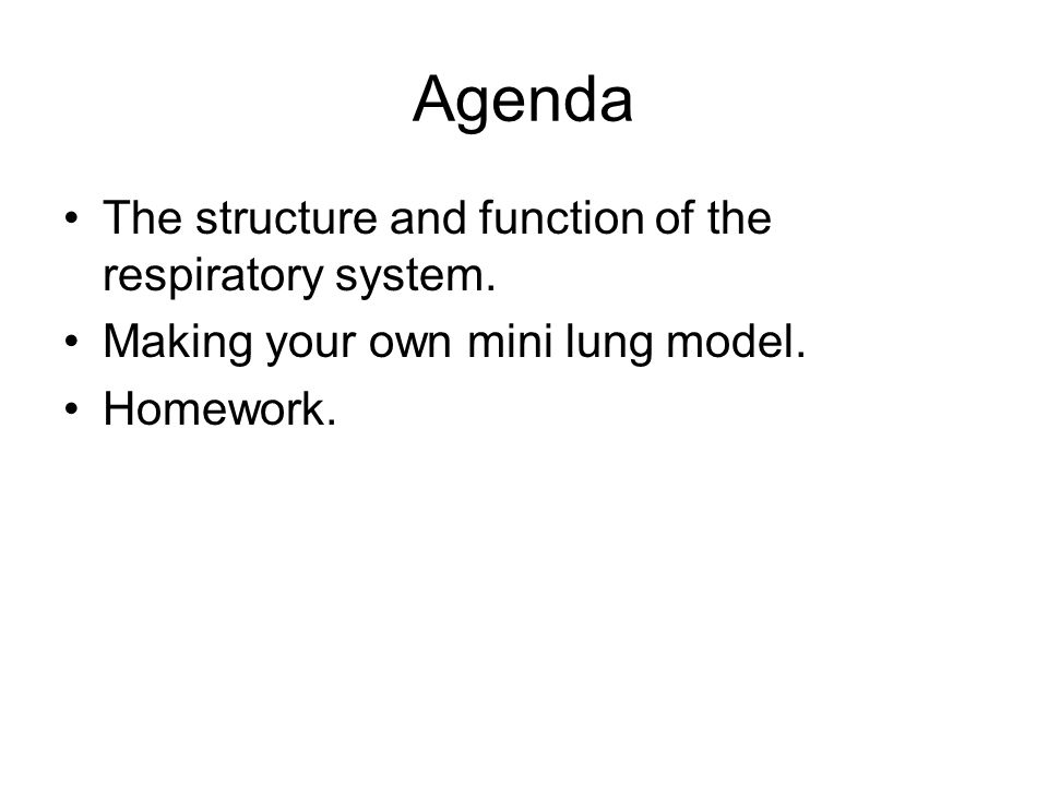 Agenda The structure and function of the respiratory system.