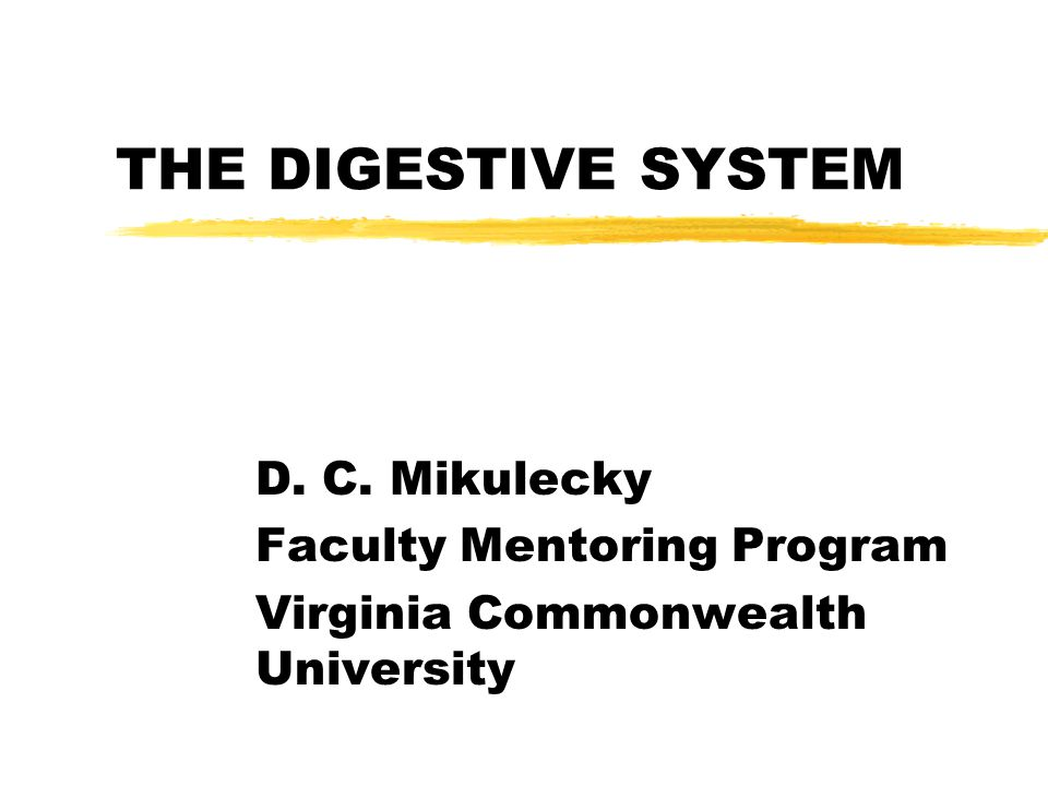 THE DIGESTIVE SYSTEM D. C. Mikulecky Faculty Mentoring Program Virginia Commonwealth University