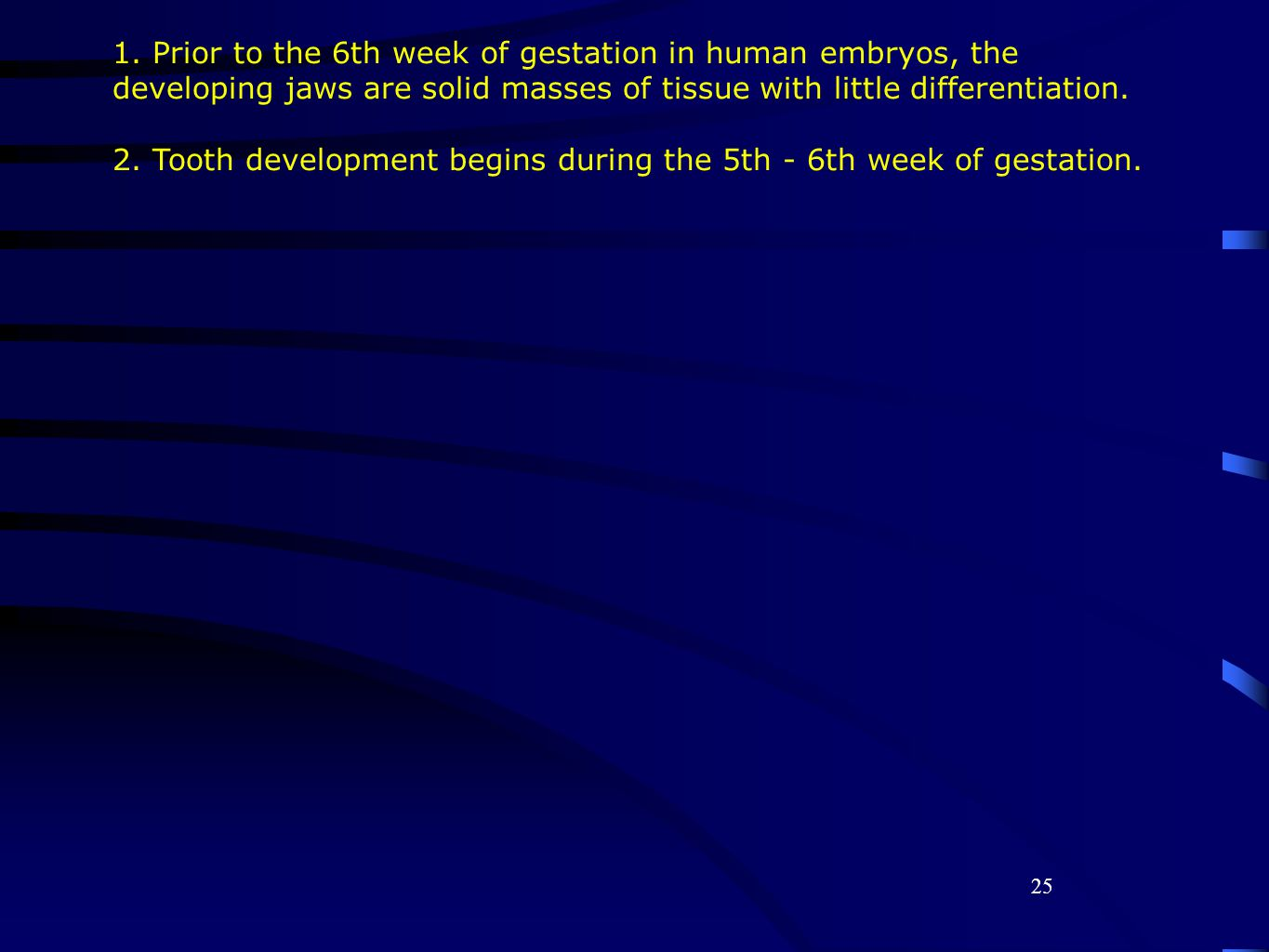 25 1. Prior to the 6th week of gestation in human embryos, the developing jaws are solid masses of tissue with little differentiation. 2. Tooth develo