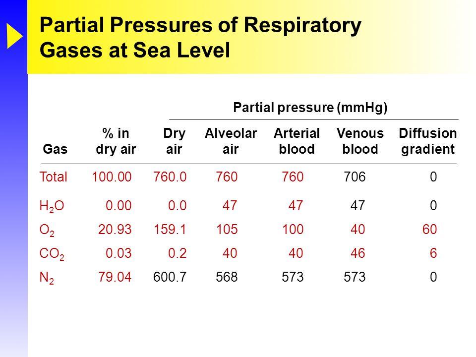 Tortora & Grabowski 9/e  2000 JWS 23-42 Partial Pressures of Respiratory Gases at Sea Level Total100.00760.07607607060 H 2 O0.000.04747470 O 2 20.931