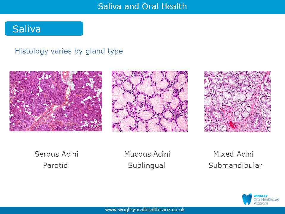 Saliva and Oral Health www.wrigleyoralhealthcare.co.uk Caries Demineralisation-Remineralisation - When the pH value is <5.5 - Calcium (Ca 2+ ) and Phosphate (PO4 3 -) are withdrawn from the dental enamel.