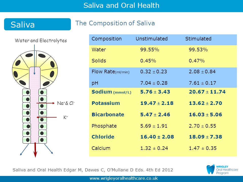Saliva and Oral Health www.wrigleyoralhealthcare.co.uk Diet -Acids : Food, drinks and frequency.