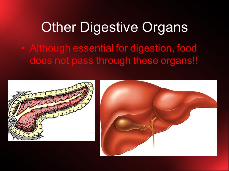 Enzymatic Digestion (cont.) 3.Small Intestines and Pancreas (cont.) ii.