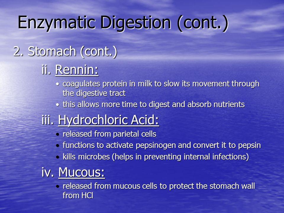 Enzymatic Digestion (cont.) 3.