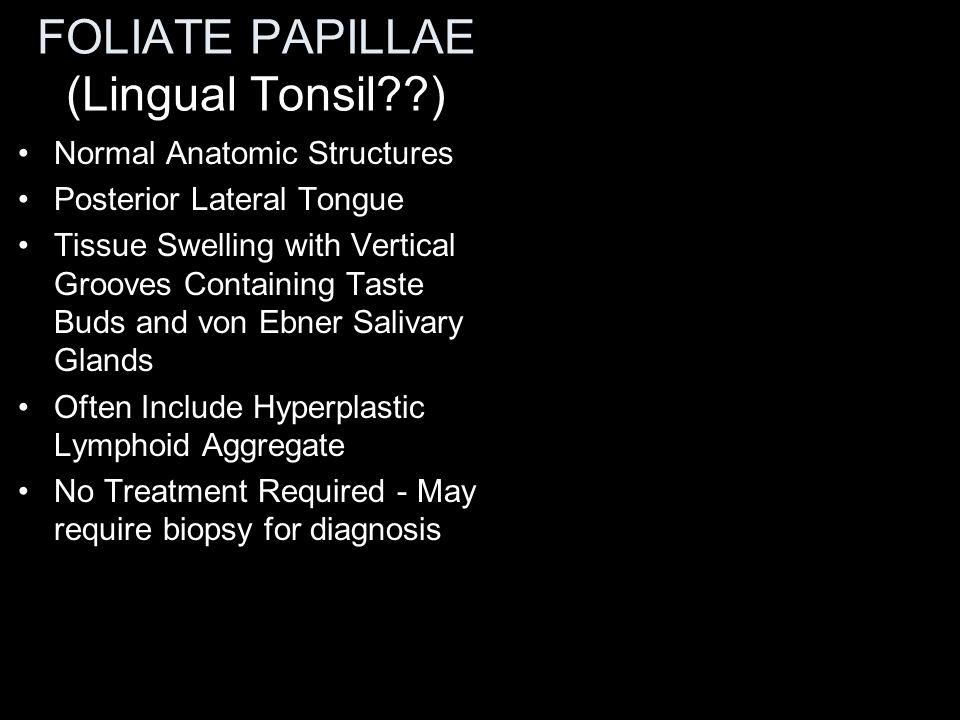 Rule of thumb!------ Swellings in lower lip – mucoceles; swellings in upper lip - neoplasms