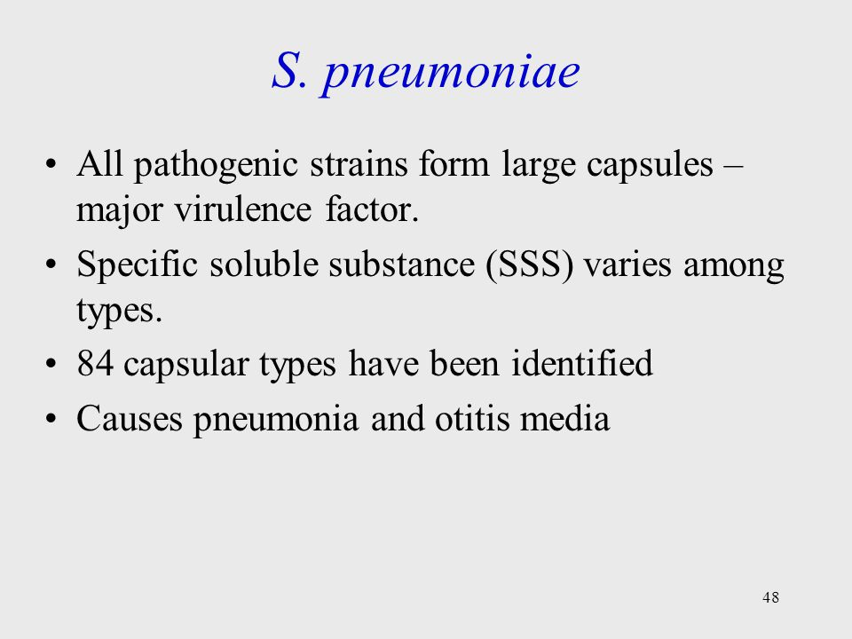 48 S. pneumoniae All pathogenic strains form large capsules – major virulence factor. Specific soluble substance (SSS) varies among types. 84 capsular