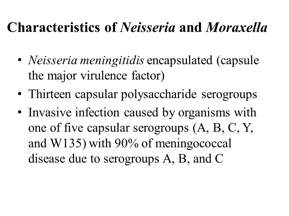 Neisseria gonorrhoeae: Identification Off-white colonies on chocolate agar with no discoloration of agar Acid from glucose but not maltose, sucrose, fructose, or lactose Positive superoxol test (Catalase with 30% H 2 O 2 ) Colistin resistance (growth on Modified Thayer-Martin medium)
