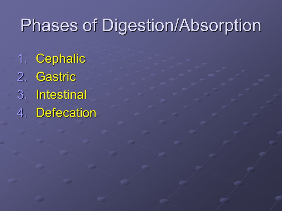 Phases of Digestion/Absorption 1.Cephalic 2.Gastric 3.Intestinal 4.Defecation