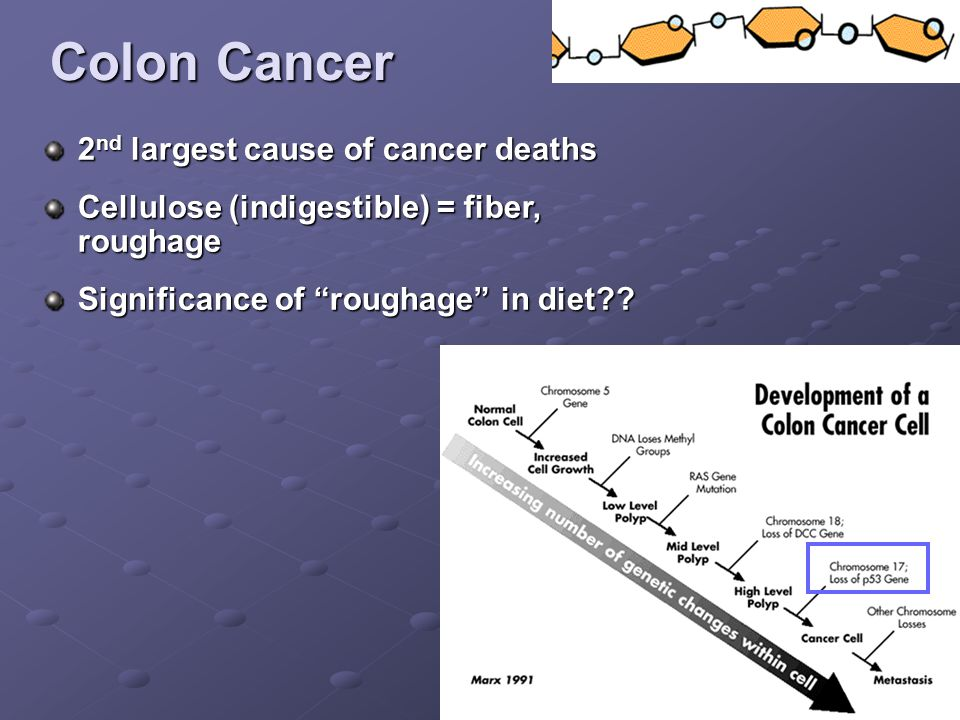 Colon Cancer 2 nd largest cause of cancer deaths Cellulose (indigestible) = fiber, roughage Significance of roughage in diet??