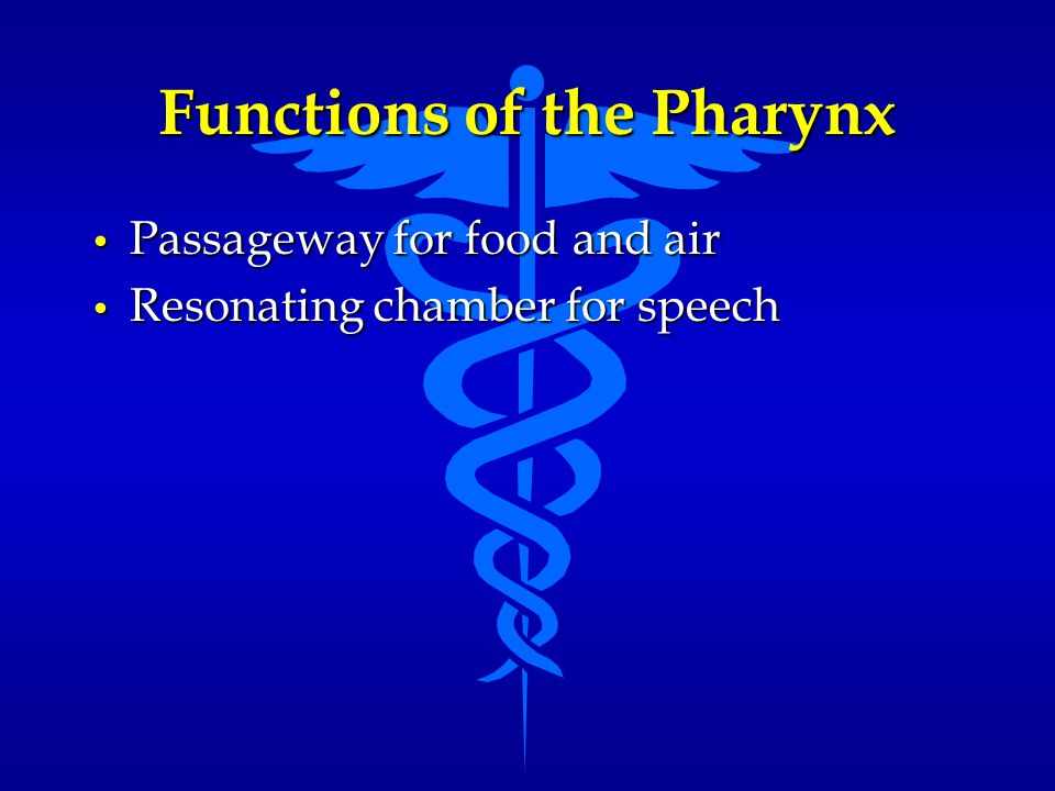 Functions of the Pharynx Passageway for food and air Passageway for food and air Resonating chamber for speech Resonating chamber for speech