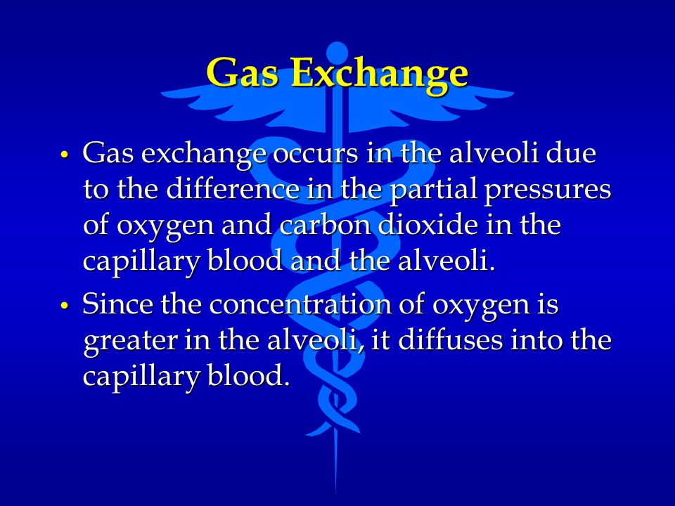 Gas Exchange Gas exchange occurs in the alveoli due to the difference in the partial pressures of oxygen and carbon dioxide in the capillary blood and