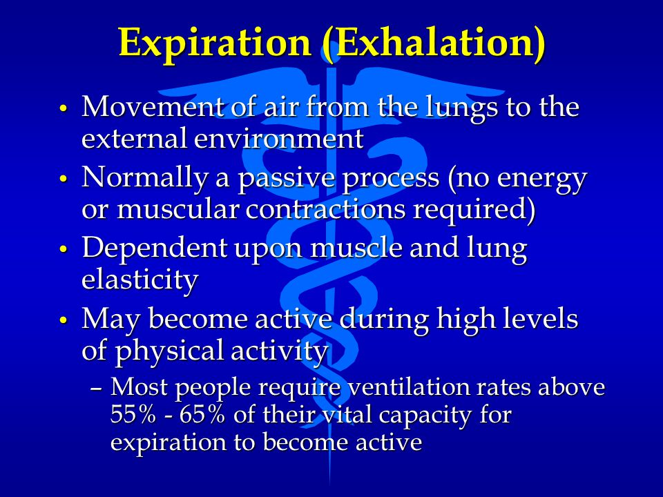 Expiration (Exhalation) Movement of air from the lungs to the external environment Movement of air from the lungs to the external environment Normally