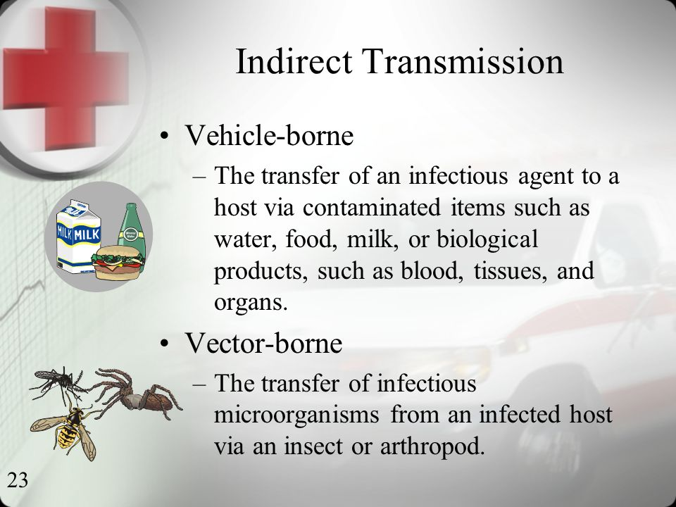 23 Indirect Transmission Vehicle-borne –The transfer of an infectious agent to a host via contaminated items such as water, food, milk, or biological products, such as blood, tissues, and organs.