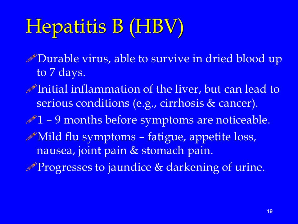 19 Hepatitis B (HBV) !Durable virus, able to survive in dried blood up to 7 days.