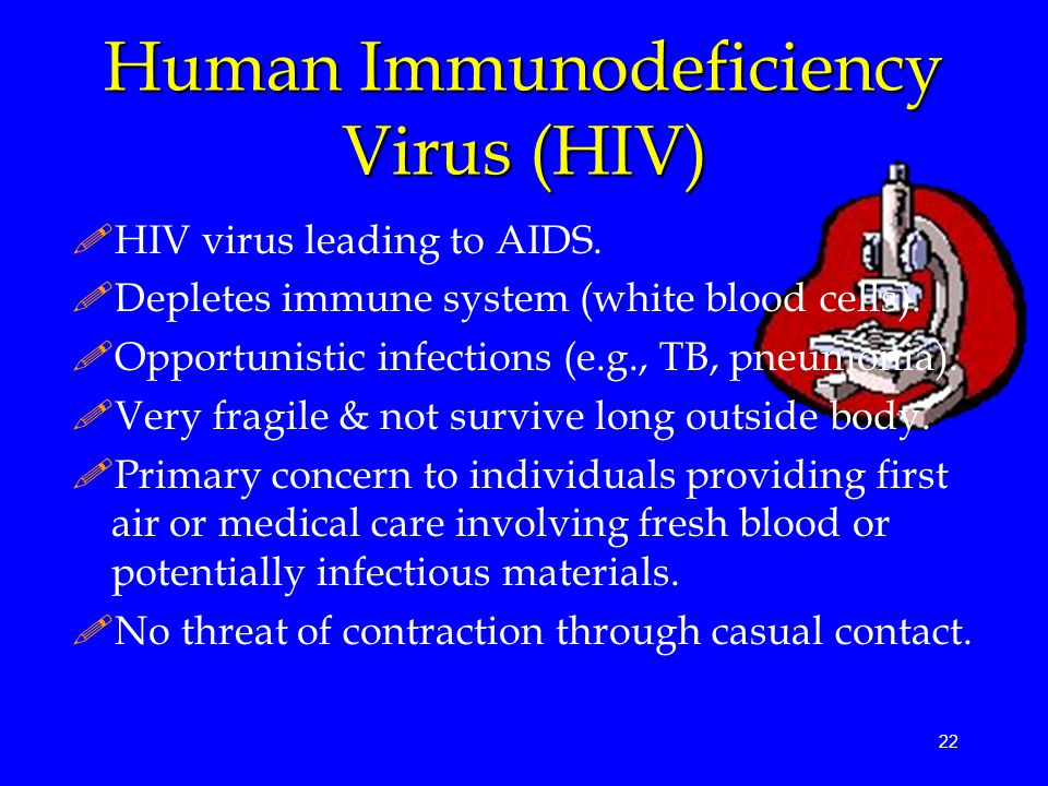 22 Human Immunodeficiency Virus (HIV) !HIV virus leading to AIDS.