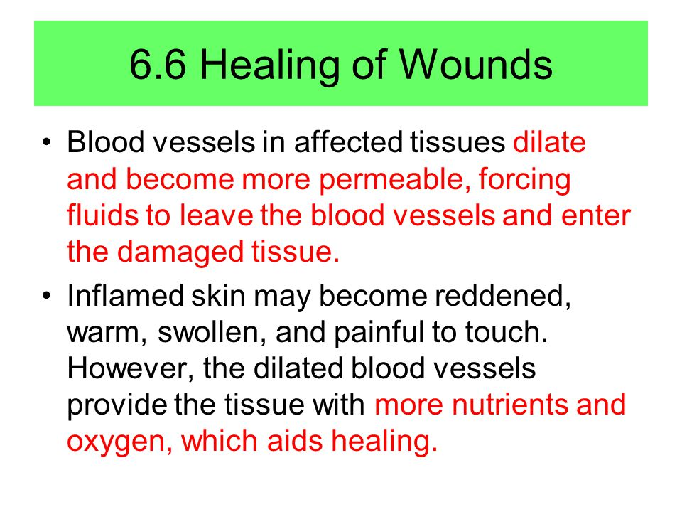 6.6 Healing of Wounds Blood vessels in affected tissues dilate and become more permeable, forcing fluids to leave the blood vessels and enter the damaged tissue.