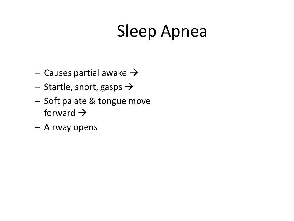 Sleep Apnea – Causes partial awake  – Startle, snort, gasps  – Soft palate & tongue move forward  – Airway opens