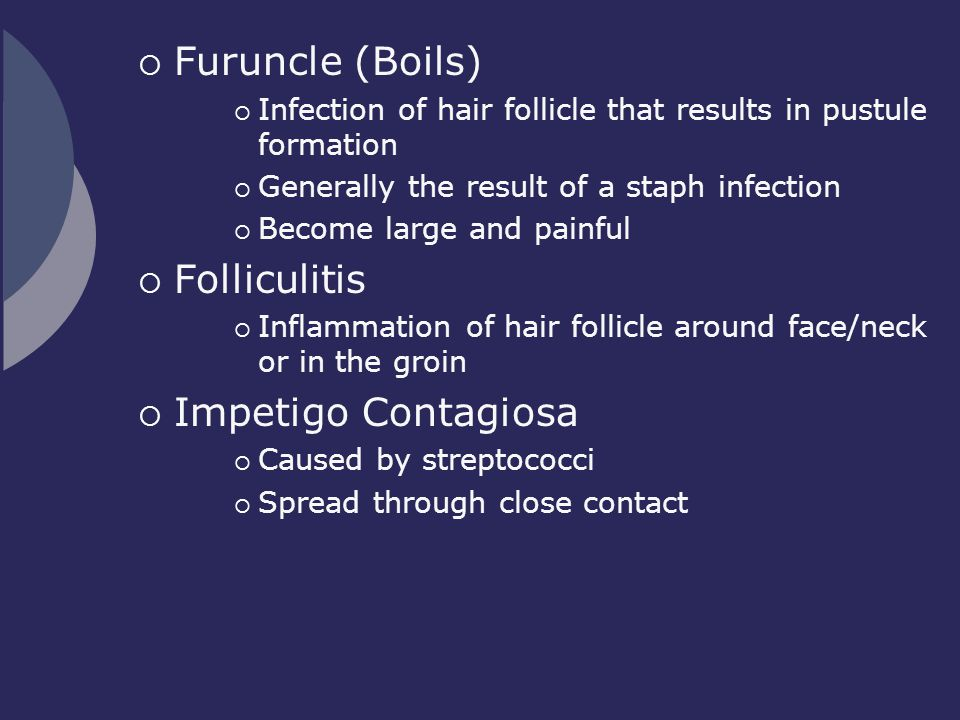  Furuncle (Boils)  Infection of hair follicle that results in pustule formation  Generally the result of a staph infection  Become large and painf