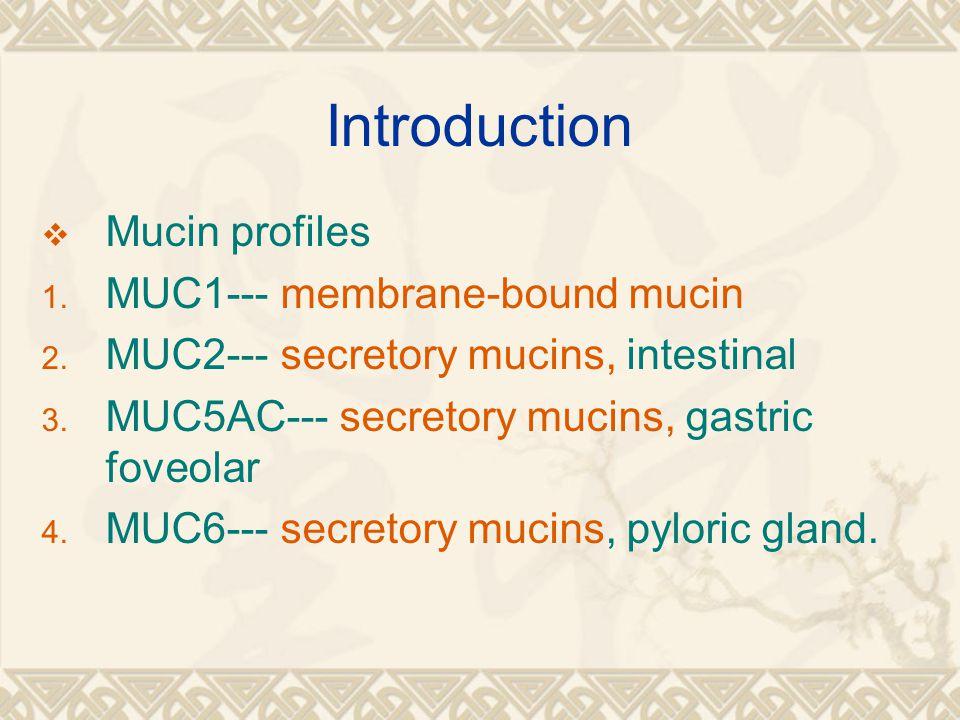 Introduction  Mucin profiles 1. MUC1--- membrane-bound mucin 2. MUC2--- secretory mucins, intestinal 3. MUC5AC--- secretory mucins, gastric foveolar