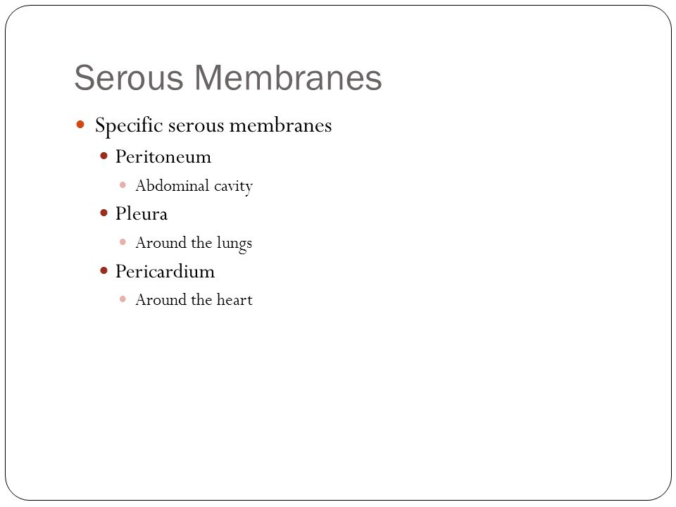 Serous Membranes Specific serous membranes Peritoneum Abdominal cavity Pleura Around the lungs Pericardium Around the heart