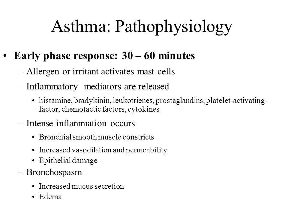 Asthma: Pathophysiology Early phase response: 30 – 60 minutes –Allergen or irritant activates mast cells –Inflammatory mediators are released histamin