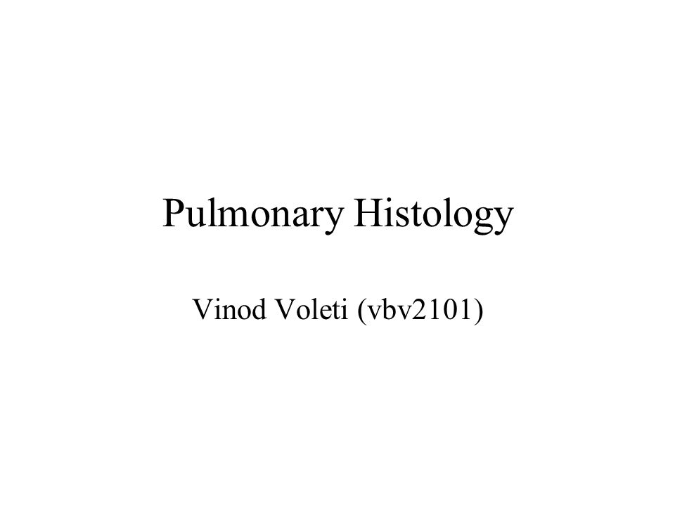 Pulmonary Histology Vinod Voleti (vbv2101)