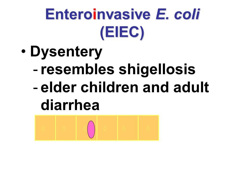 Enteroinvasive E. coli (EIEC) Dysentery -resembles shigellosis -elder children and adult diarrhea