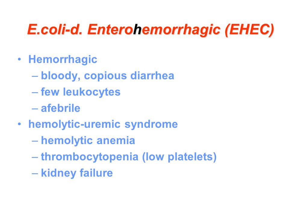 E.coli-d. Enterohemorrhagic (EHEC) Hemorrhagic –bloody, copious diarrhea –few leukocytes –afebrile hemolytic-uremic syndrome –hemolytic anemia –thromb