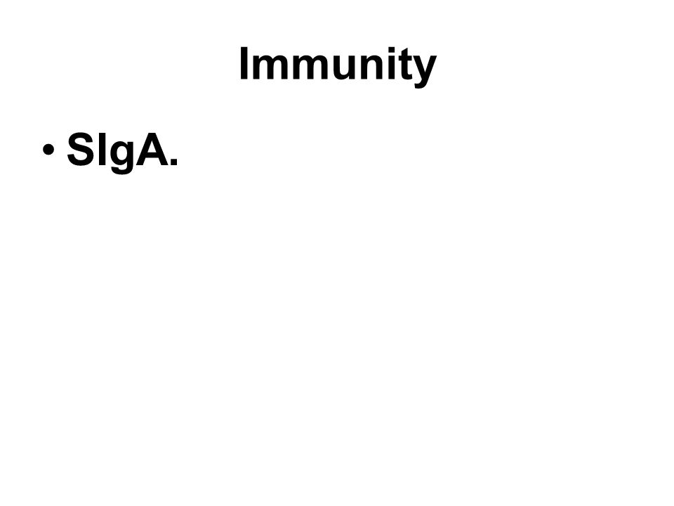 Immunity SIgA.